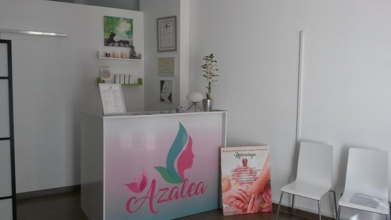 azalea-murcia