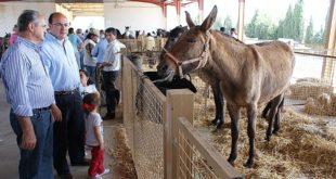 Exposición de animales exóticos y autóctonos