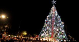 Encenderán el árbol de Navidad de la Plaza Circular