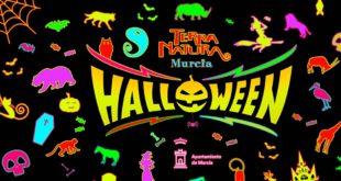 Disfruta del Halloween en Terra Natura