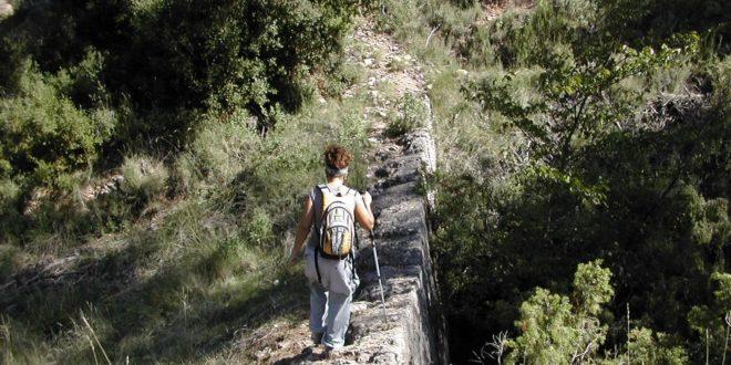 "Realizarán la ruta guiada ""Sendero de El Berro"""