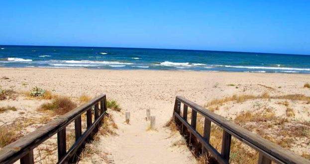 Descubre los tesoros de una playa natural