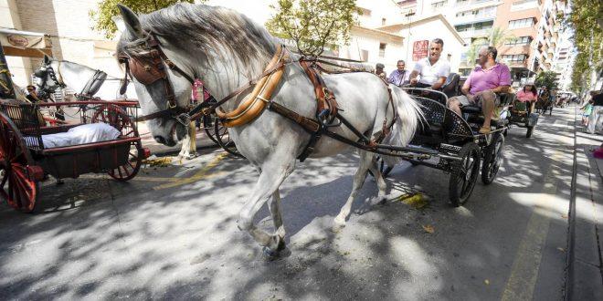"""Disfruta del desfile del """"Día del Caballo"""""""